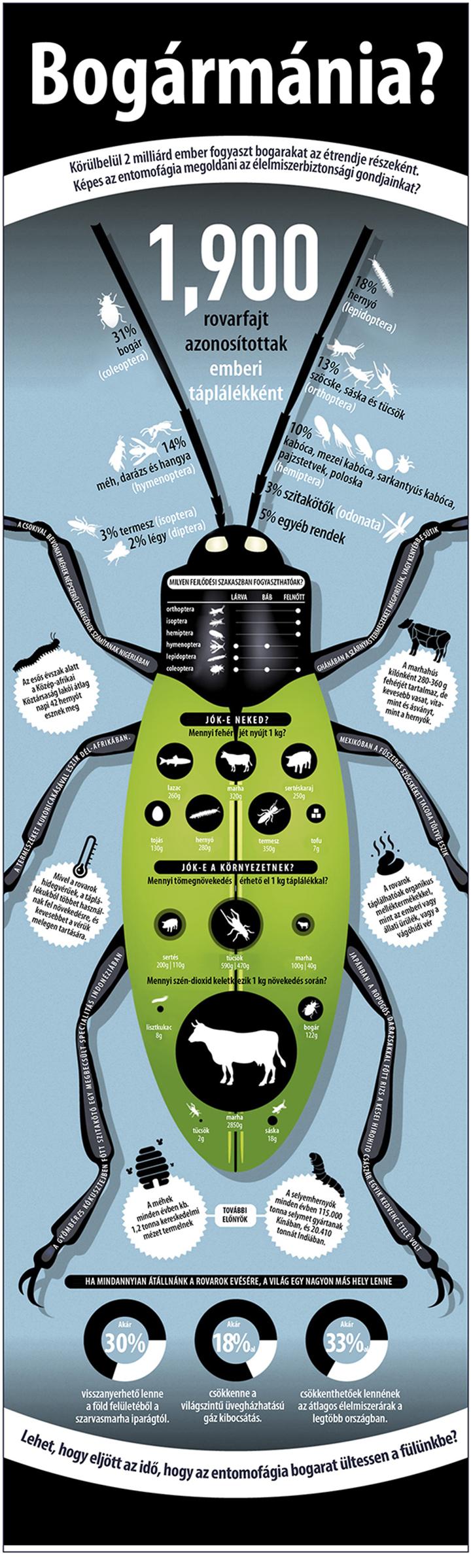 avatar mérsékelt zsírvesztés az alpesi tea jó a fogyáshoz