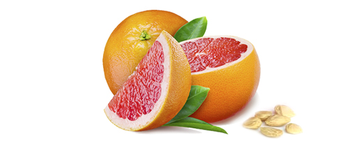 grapfruit-mag-kivonat-fitotree