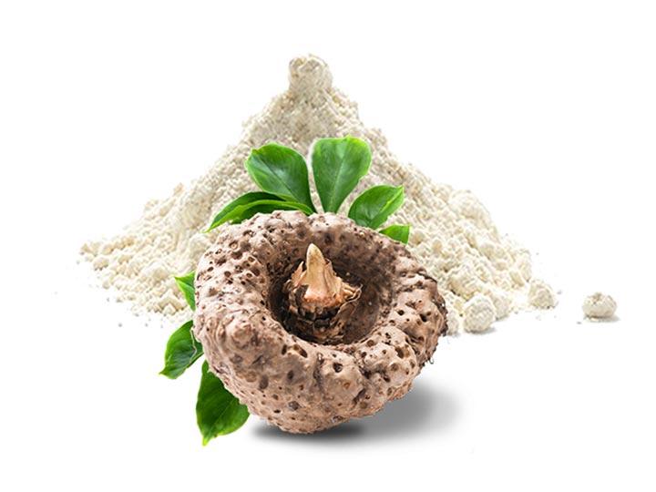 A legjobb étvágycsökkentő növények